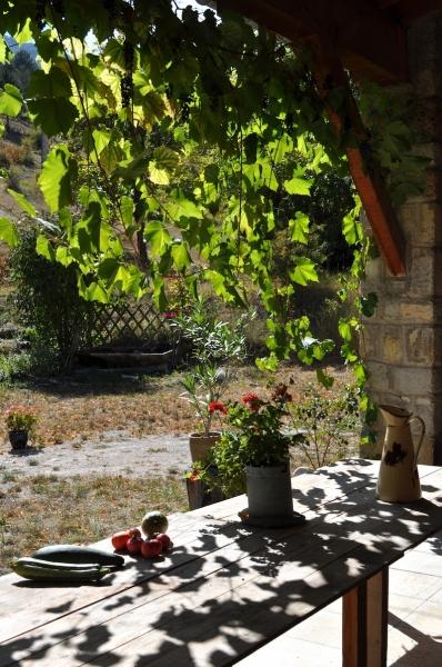 espenel-zomer-2010-046