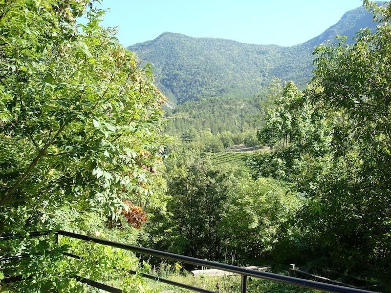 uitzicht-op-wijngaard-en-notenboomgaard